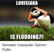 Puffin Meme - 25 best memes about unpopular opinion puffin unpopular