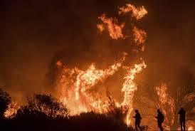 Where Do Celebrities Live In California - skirball fire officials determine cause of bel air blaze apple