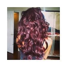 Light Burgundy Hair Burgundy And Purple Hair Polyvore