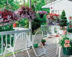 plant garden and patio backyard vegetable garden house design