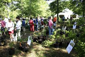 20th annual plant sale oct 12 14 to benefit weeks bay