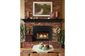 Direct Vent Fireplace Insert by Innsbrook Traditional Direct Vent Fireplace Inserts Backyard