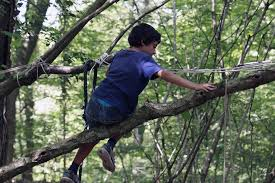 assemble tree play workshop arnolfini