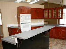 Can You Paint Kitchen Cabinets Without Sanding Kitchen Refinish Cabinets White Different Ways To Paint Kitchen