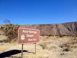 anza borrego desert ombre cacti camping in anza borrego desert treasure tromp