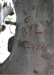 Initials Carved In Tree 19 Best Wedding Decorations Images On Pinterest Initials A Tree