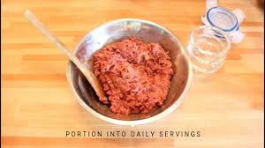 raw food for puppies homemade raw dog food youtube