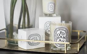 diptyque winter candle duo georgietoms