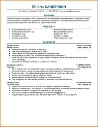 Car Driver Resume Sample Resume Of A Professional Driver Professional Resumes