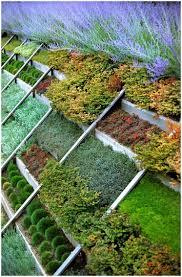 Small Vegetable Garden by Backyards Splendid Vegetable Garden Ideas Layouts Philippines