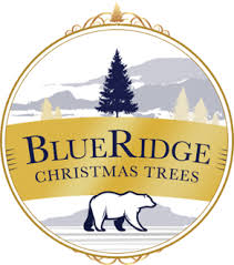blue ridge trees real trees delivered