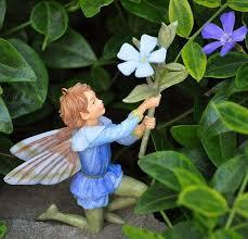 39 best garden flower fairies images on fairies