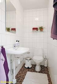 cute bathroom ideas for apartments bathroom cute bathroom ideas fresh cute bathroom ideas for