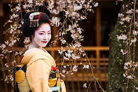 Japan       Geisha               Turtle Expedition Japan Info