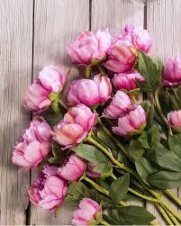 Flower Alt Code - peony silk flower stems for casual decorating at silkflower com