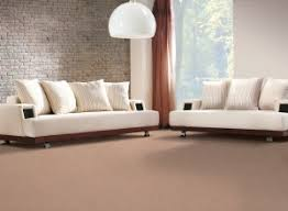 can i use carpet cleaner on upholstery carpet cleaning leeds professional and service