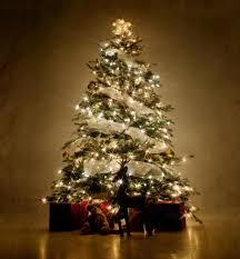 design white tree with lights best 25 trees ideas