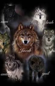 twilight wolf pack preferences kelsi wattpad
