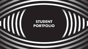 what do companies look for in a design portfolio how do you show