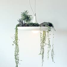 accessories hanging light fixtures with perfect swag light home