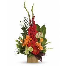 funeral plants sympathy and funeral flowers a matter of taste georgetown tx 78628