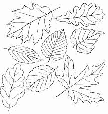 princess pea coloring pages many interesting cliparts