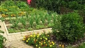 backyard vegetable garden design modern living room ideas