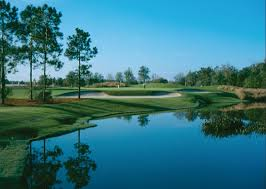 homes for sale in the world golf village homes u0026 real estate for