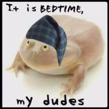 Bedtime Meme - it is bedtime my dudes it is wednesday my dudes know your meme