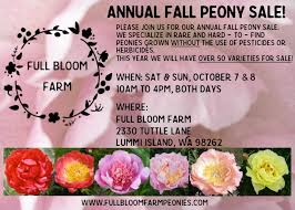 peonies for sale annual fall peony root sale bloom farm
