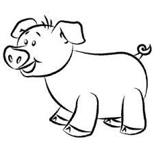 draw a pig u2013 how to draw a cartoon pig polyvore