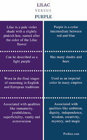 meaning of the color blue difference between lilac and purple definition shades color