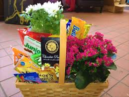 junk food gift baskets junk food and plant basket norwood ma florist