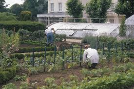 tips from a french kitchen garden vegetable gardener