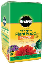 amazon com miracle gro water soluble all purpose plant food