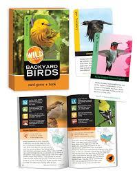 Backyard Wild Birds Wild Cards Backyard Birds