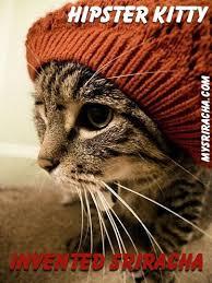 Hipster Cat Meme - hipster cat meme 28 images hipster cat by qwertytreqz meme