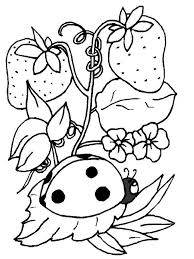 ladybug and strawberry coloring page to print for free animal