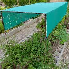 desert gardening dealing with severe weather