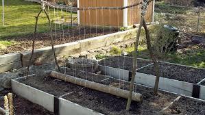 vegetable garden 2012 crispy bits