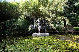 City Botanic Gardens City Botanic Gardens Attractions Brisbane City Council