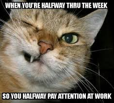 Wednesday Funny Meme - wednesday work meme when you re halfway thru the week so you