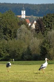 Vhs Bad Waldsee Stadt Aulendorf Gastgeberverzeichnis Pdf