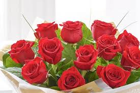 roses valentines day s day 2015 where to get a dozen roses in newcastle