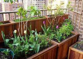 Redwood Planter Boxes by Spring Flash Sale Save Up To 15 For 3 Days Only Forever Redwood