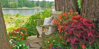 Shady Backyard Landscaping Ideas Container Garden Design Ideas Exprimartdesign Com