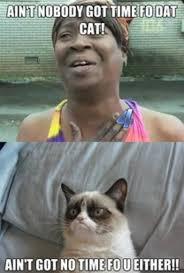 Sweet Brown Meme Generator - grumpy cat ain t got no time for sweet brown meme grumpy cat