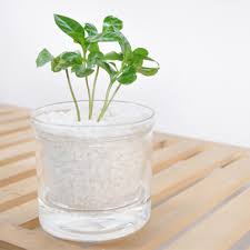 Decorative Desk Accessories by Office Office Desk Plant On Decorative Planters For Fresh Home