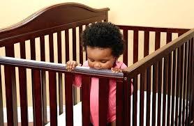 Palisades Convertible Crib Baby Crib Teething Guard Babies R Us Rail Cover Cribs Europa