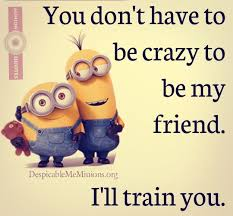 top 30 minion friendship quotes quotes and humor